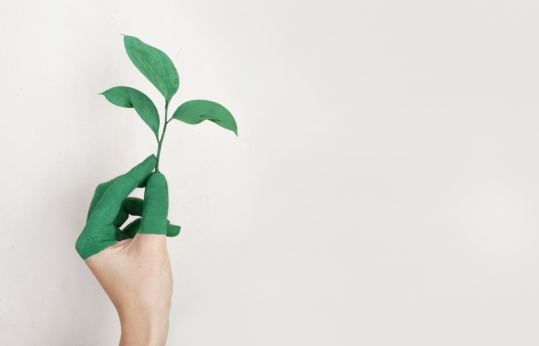 Green Fingers on Hand Holding Leaf