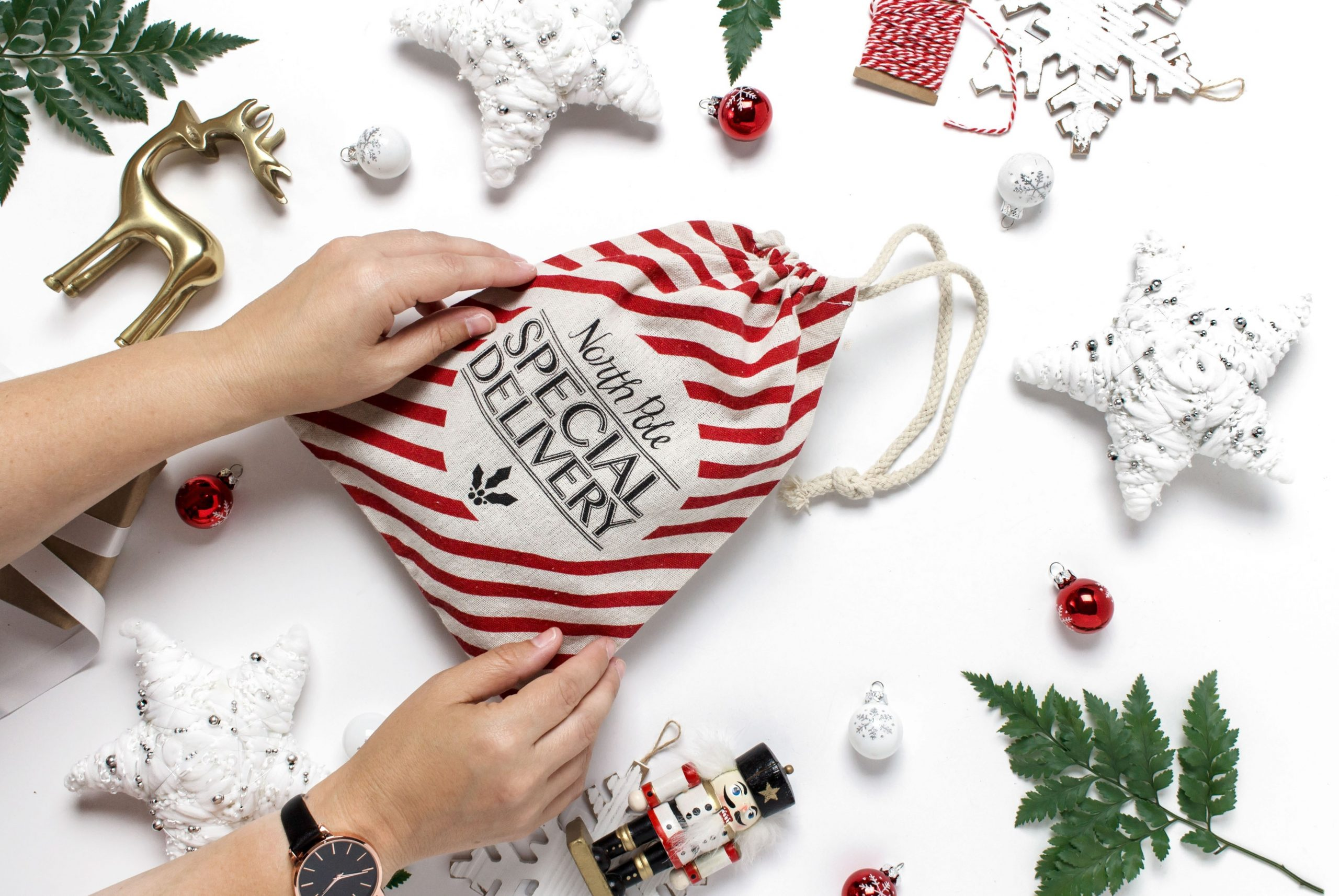 Red and white striped bag from the North Pole marked Special Delivery.